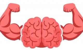 Hersenen met armen die spierballen laten zien