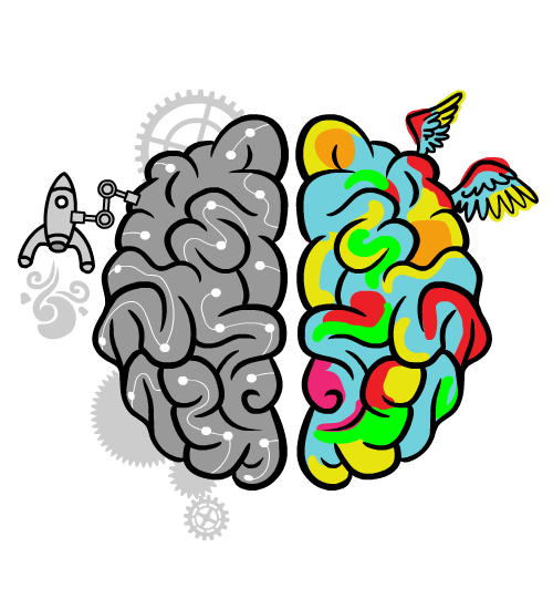 De linker- en rechterhersenhelft illustratief weergegeven met hun kwaliteiten